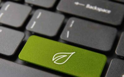 Sustainability in IT sector needs push in the back